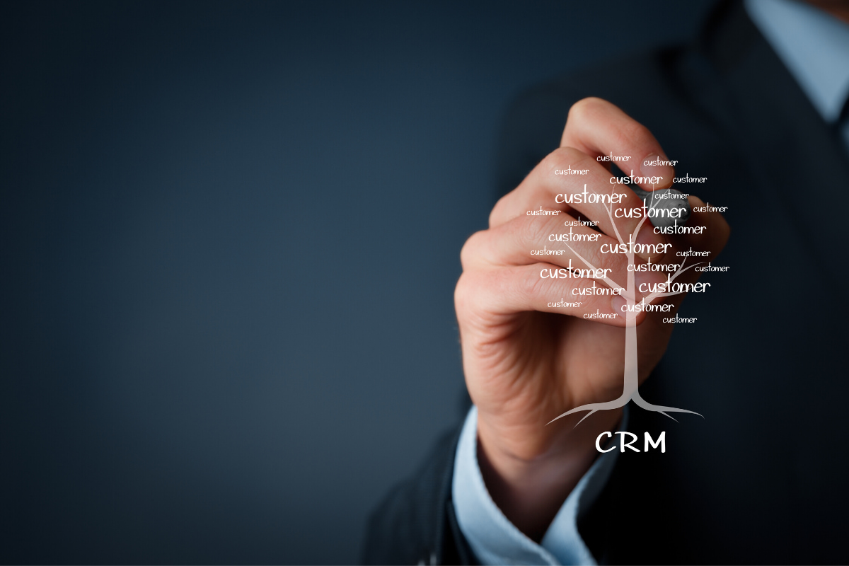 Person outlining what CRM plugin for WordPress is